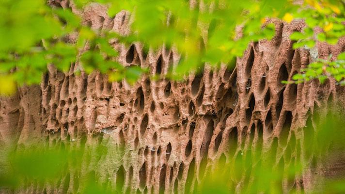Sandsteinstuktur