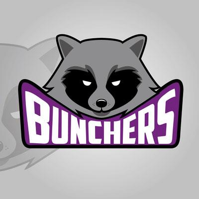 Ivan Bunin design - raccoon