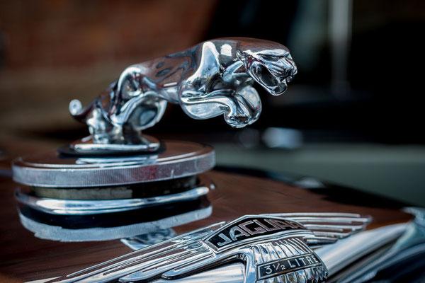 leaper kühlerfigur auf einem jaguar oldtimer