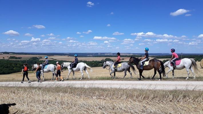 Balade sur poney au centre équestre Du vent dans les chevaux