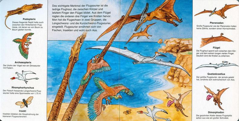 Illustration aus `Die Dinosaurier. Mein allererstes Sachbuch´, erschienen bei paletti, Karl Müller Verlag 2005