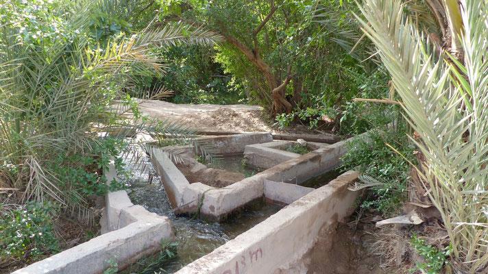 Un système de répartition de l'eau d'irrigation
