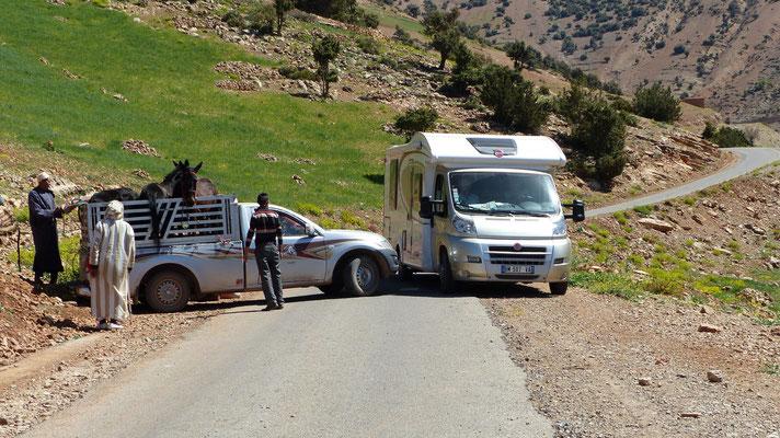 Chargement de chevaux sur la route