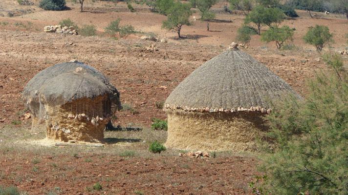 Meules traditionnelles de fourrage dans le Rif
