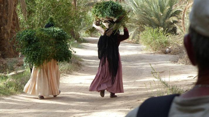 Les dames sont allées récolter du fourrage pour les bêtes