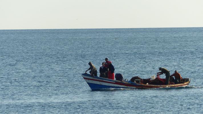 Les barques commencent à rentrer avant 7 h