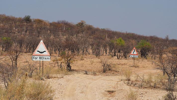 103 km de déformations et de virages... Les panneaux après Okangwati sont là pour nous prévenir que la route pour le Van Zyl n'est pas de tout repos !