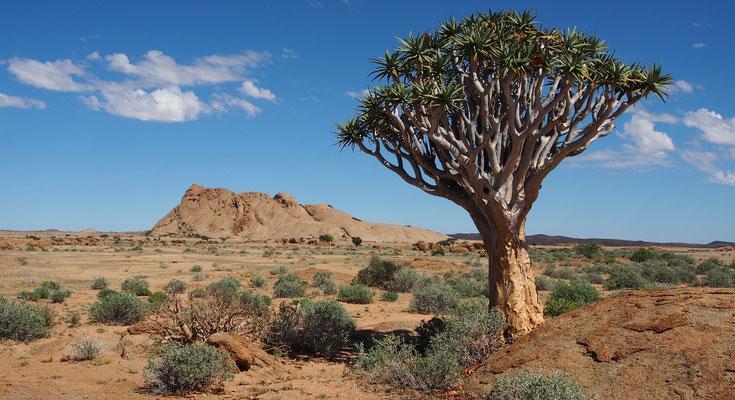 Trek dans le Namib central ; Bloedkoppie ; Namibie