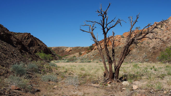 Trek dans le Namib central ; Rock Arch ; Namibie