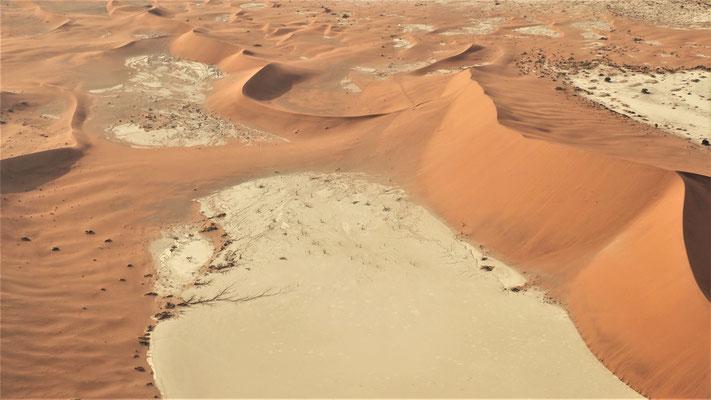 Survol du Namib ; Deadvlei ; Namibie