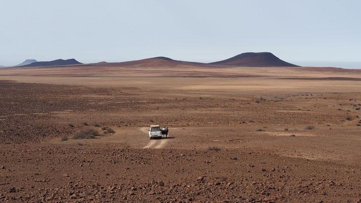 Sur le plateau, entre Hoanib et Hoarusib ; Namibie