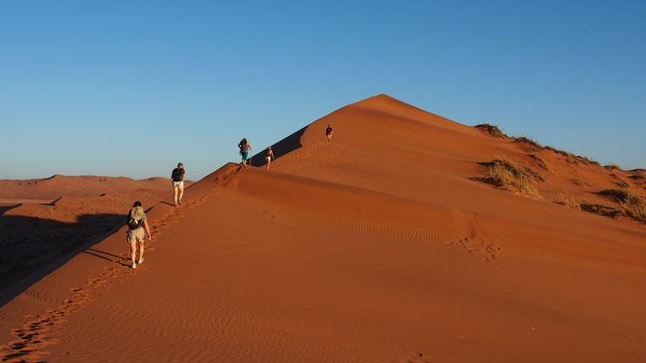 Trek dans le Namib central ; Homeb ; Namibie