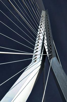 Rotterdam - Ersamusbrücke