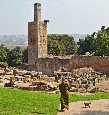 Chellah - 2300 Jahre alte Ruinenstadt