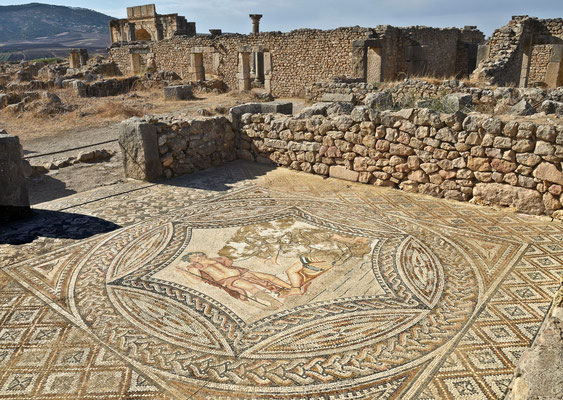 Volubilis - ehem. römisches Provinzzentrum
