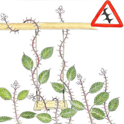 Die Armenische Brombeere wuchert in alle Richtungen und begräbt andere Pflanzen unter sich. Ebenso klettert sie über Spielplätze und macht diese unbrauchbar.