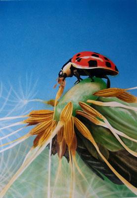 Sommer, Airbrushgemälde, Airbrushpapier, 30x40 cm (2012)