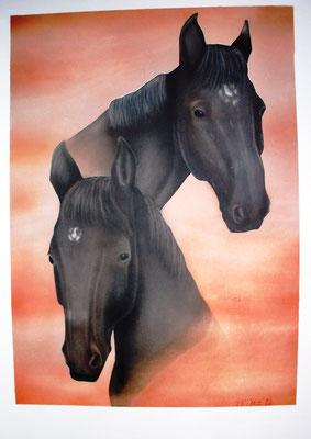 Fury, Airbrushportrait nach zwei Fotovorlagen, Airbrishpapier, 30x40 cm (2012)