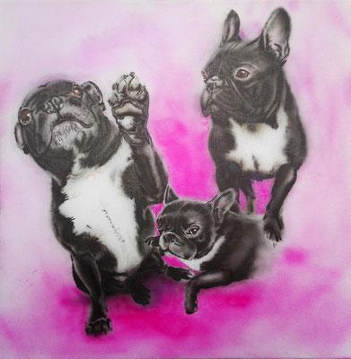 Hundeportrait, Airbrush, 40x40 cm, Oktober 2017 (Auftragsarbeit)