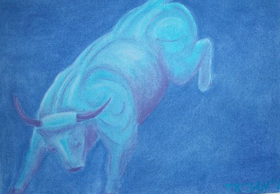 Stier, Pastellkreide, Zeichenpapier, 30x40 cm (2012)
