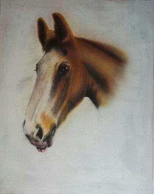 Pferdeportrait, Airbrush, 40x50 cm, November 2017 (Auftragsarbeit)