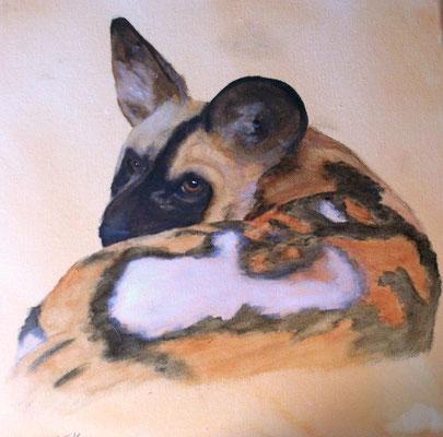 afrikanischer Wildhund, wasserlösliche Ölfarben, Leinwand, 40x40 cm (2013)