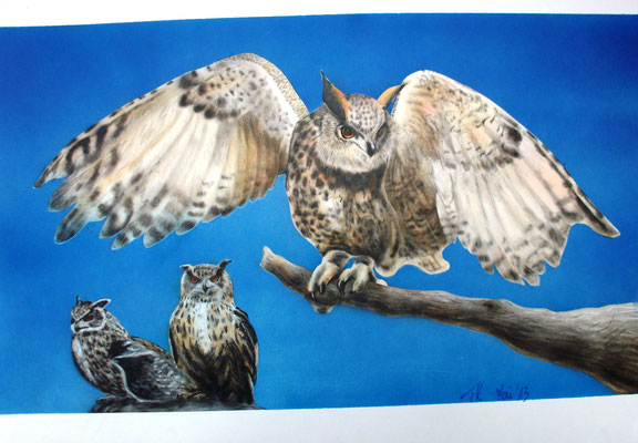 Uhus, Airbrushgemälde nach zwei Fotovorlagen, Airbrushpapier, 30x40 cm (2013)