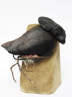 Zwarte vogel 32x32x22cm 195,-