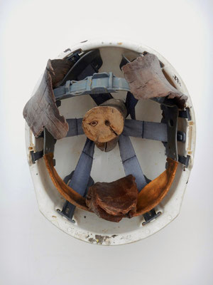 Varkenskop (staand onder glazen stofkap) 30x24x35cm 350,-