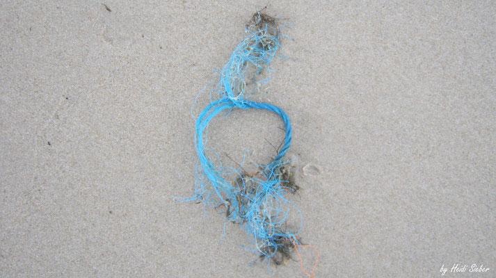 Blaues Strand-Stilleben