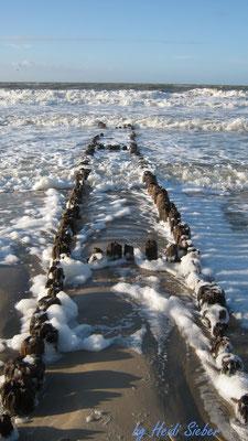 Steg für Meerjungfrauen