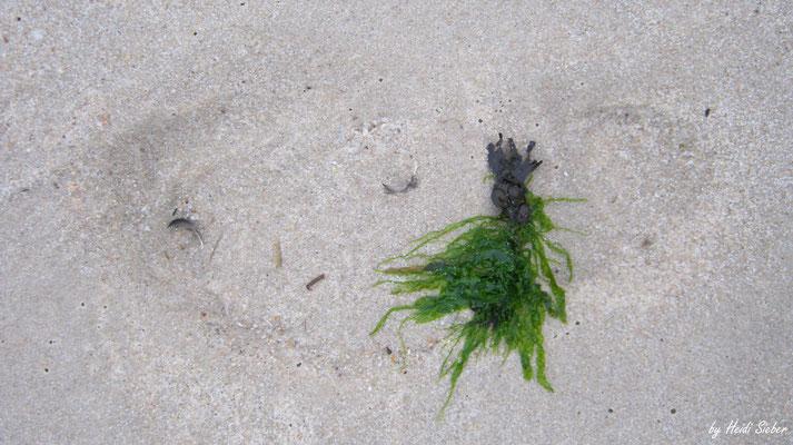 Dekorierte Schuhspur im Sand