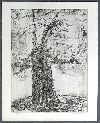 Baum 4 - Radierung, 2008, versch. Techniken ca 32x25 auf 47x37 cm, Auflage 17