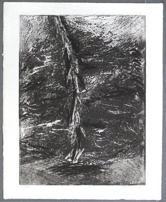 Baum 7 - Radierung, 2008, versch. Techniken ca 32x25 auf 47x37 cm, Auflage 17