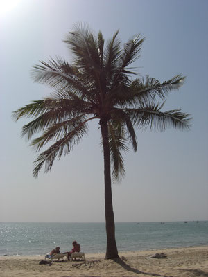 La plage à 50 mètres de la villa