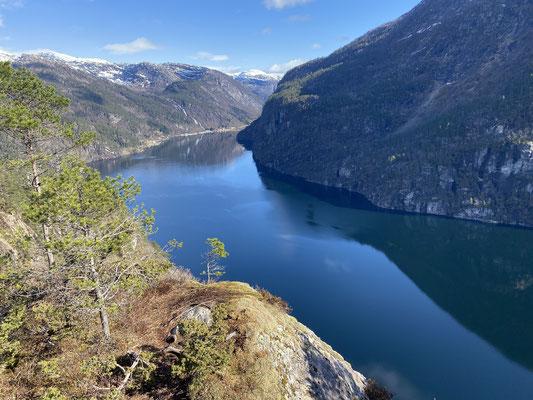 Von den Ausblicken auf die Fjorde in Norwegen konnte Tim nie genug bekommen