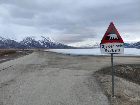 """""""Achtung! Auf ganz Svalbard laufen Eisbären frei herum..."""