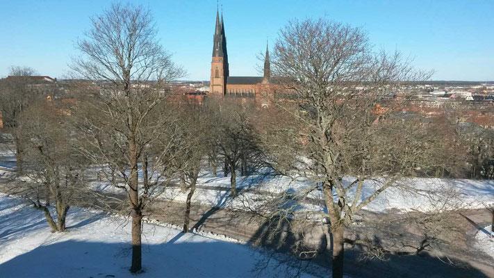 Der Dom von Uppsala