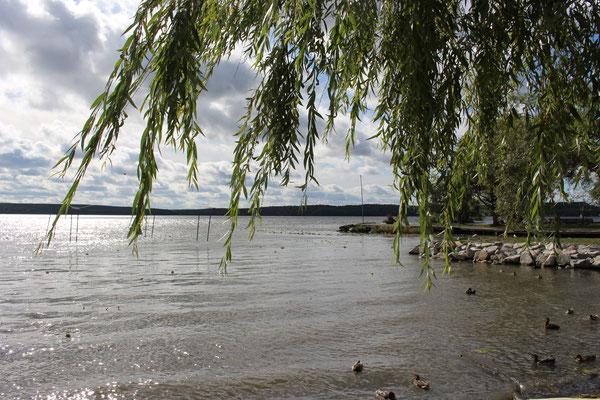 Blick auf den Mälarensee in Sigtuna
