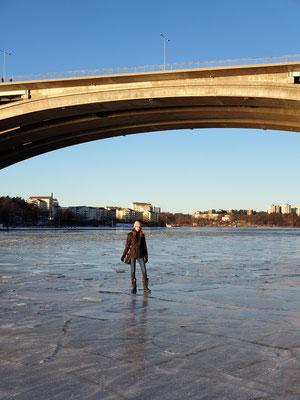 Lara auf dem Eis im Januar bei Kungsholmen