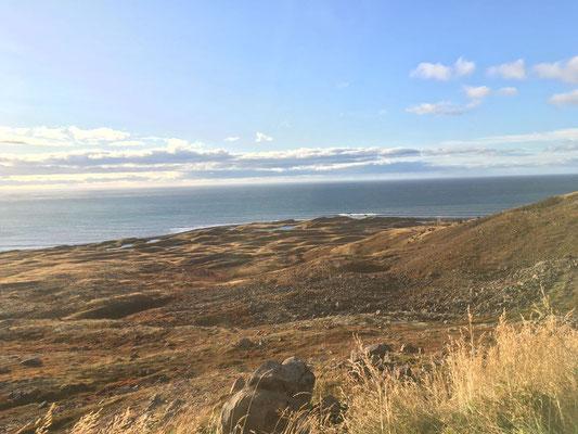 Entlang der isländischen Küstenstraße