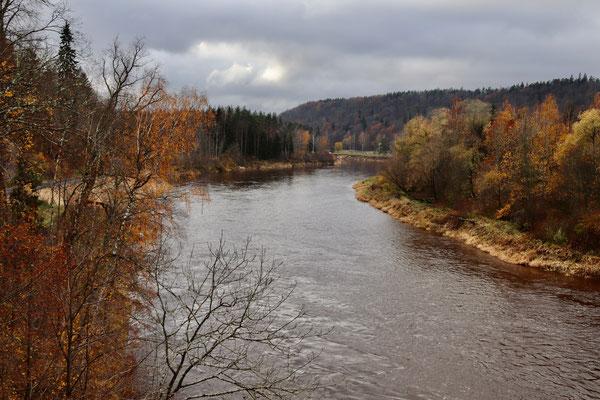 Im Herbst sind die Wälder Lettlands besonders schön!