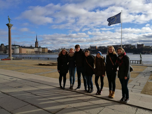 Annika Reiß (5.v.l.) mit den Praktikanten aus Schweden bei ihrem Besuch in Stockholm im Februar 2017