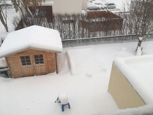 Schnee im Garten der Karmelitinnen in Akureyri