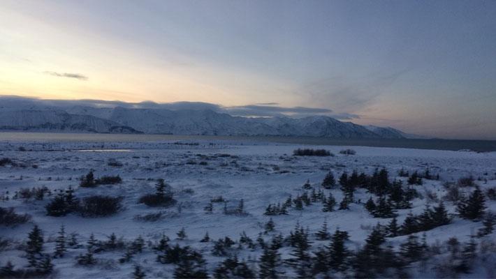 Isländische Landschaft auf dem Weg nach Husavik