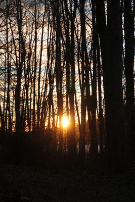 Sonnenaufgang in Marieudd