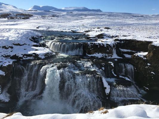 Der Wasserfall Reykjafoss