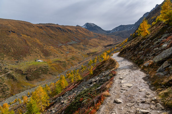 Wanderung vom Muottas Muragl zur Alp Languard