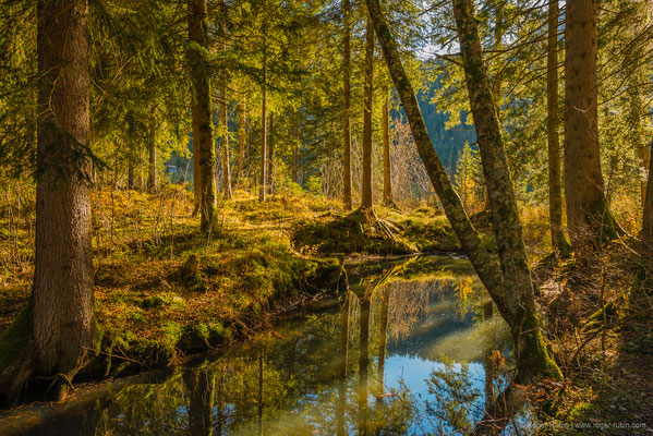 Toggenburg: Beim Schwendisee