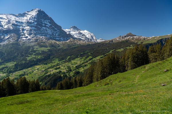 Aussicht von der Bussalp nach Grindelwald